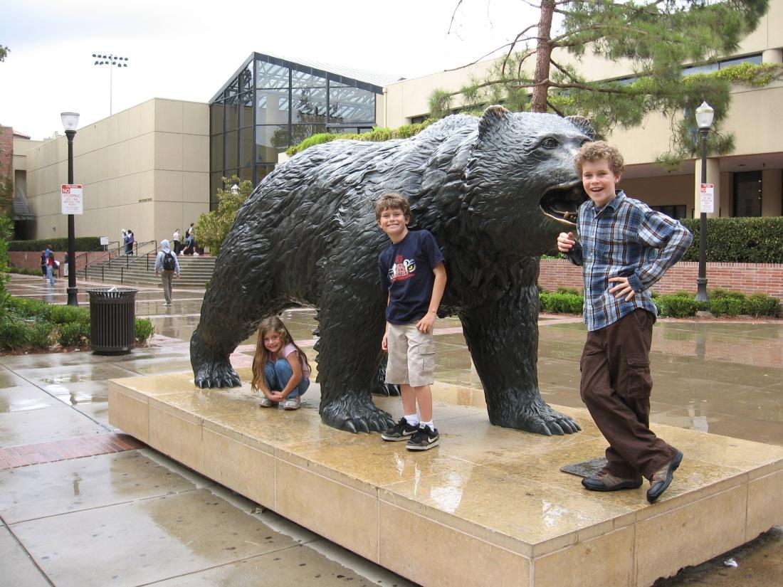 The Bruin Bear