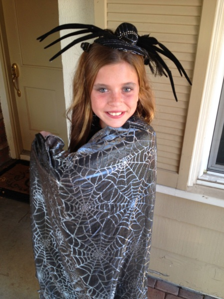 Olivia the spider!