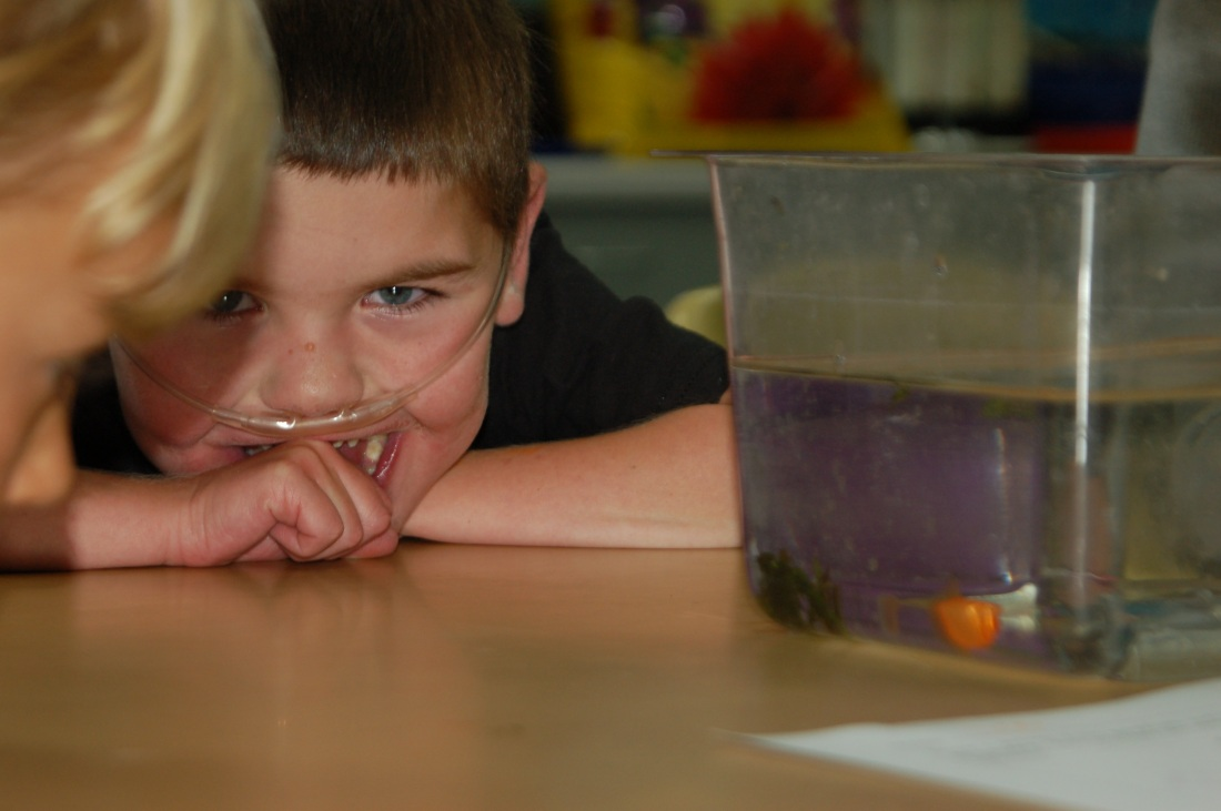 Rudy's Kindergarten teacher Mr. Casady captured this little treasure during science class a couple of weeks ago.  :)