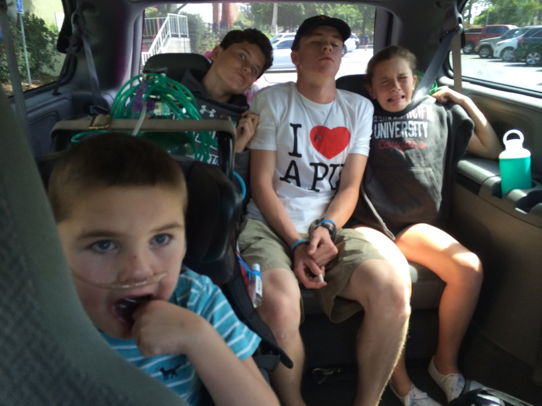 One last big sib squeeze in the van's spacious back seat!