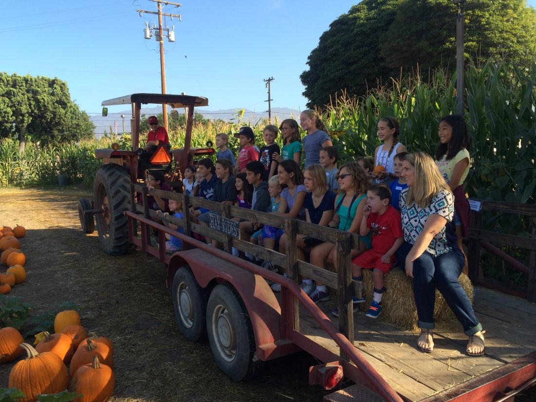 The hay ride is always a highlight...